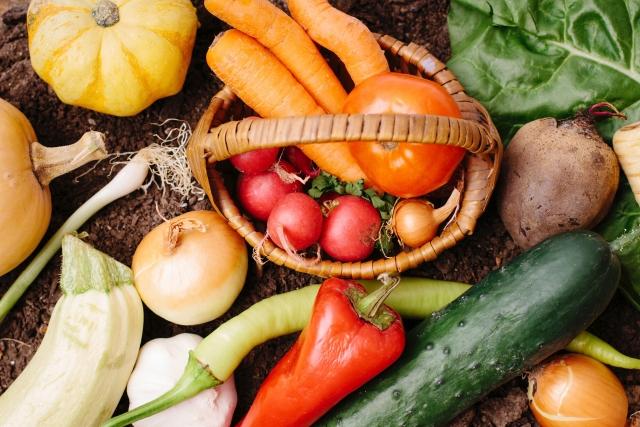 夏バテ予防の食材を知っていますか?あの意外な食材も夏バテ予防になるんです
