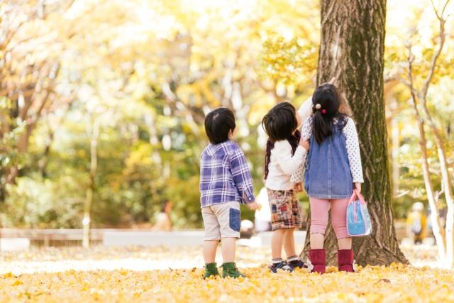 秋に行きたくなるイベント・行楽といえば?今年の秋といえばここで決まり!