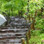 時代祭は雨でも開催される?雨天時は中止?時代祭当日の天気予報に注意