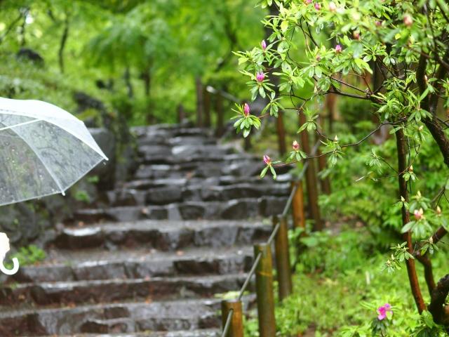 青柏祭2019は雨でも開催?雨天中止?開催日の石川県七尾市の天気予報に注意