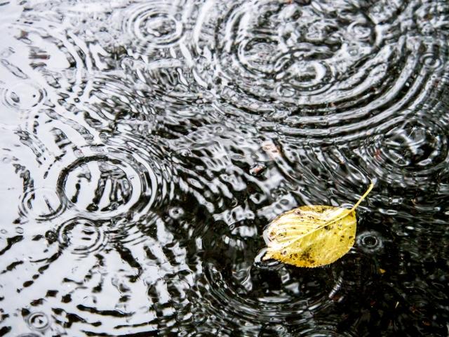 沖縄の産業まつりは雨でも開催?雨天時は中止?台風の天気予報に注意