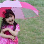 越谷花火大会は雨でも開催?雨天中止?延期は?台風、荒天の天気予報に注意