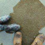 酉の市福岡は雨でも開催?雨天時中止?櫛原天満宮の天気予報に注意