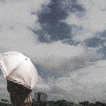 酉の市横浜は雨でも開催?雨天時中止?金刀比羅大鷲神社の天気に注意