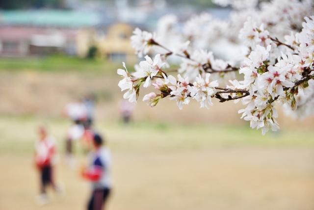 春に始めるスポーツ、運動といえば?スポーツの服装におススメコーデ