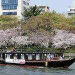 目黒川の桜花見で宴会、デートにクルーズ、屋形船、遊覧船は?感想、評価