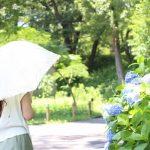 神田祭2019は雨でも開催?雨天時中止?開催日の東京千代田区の天気予報