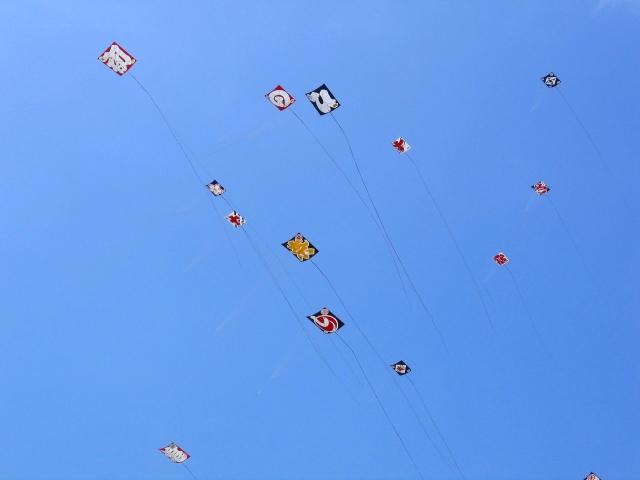 浜松まつり2019の日程、見所、屋台、凧揚げ、ミス浜松、駐車場の場所